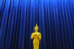 Goldene Buddha-Statue mit blauem Vorhang Stockfotos