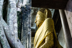 Goldene Buddha-Statue in Wat Bang Kung, Ampawa, Thailand Stockbilder