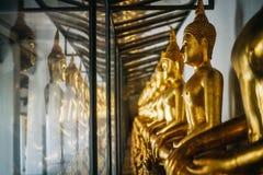 Goldene Buddha-Statuen in Lotussitz hinter dem Glas im Tempel Stockbild