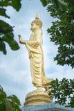 Goldene Buddha-Statuenstellung, Thailand Stockfotografie