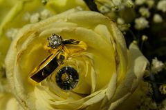 Goldene Diamond Wedding Rings Together Bright-Gelb-Blumen-Blumenblätter Stockbilder