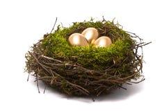 Goldene Eier in einem Nest Stockbild