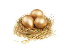 Goldene Eier im Nest Stockbilder