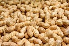Goldene Erdnüsse in den Oberteilen stockfotos