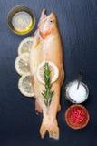 Goldene Forelle der rohen Fische mit Kräutern und Gewürzen stockbild