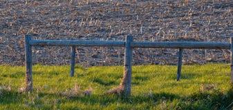 Goldene Gräser und Bauernhof-Zaun Lizenzfreies Stockbild