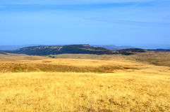 Goldene Grashügel an der Lagonacky-Hochebene Stockfoto