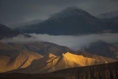 Goldene Hügel Stockfotografie
