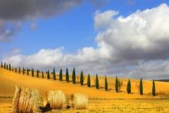 Goldene Hügel von Toskana Stockfotografie