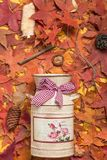 Goldene Herbstblätter stockfotografie