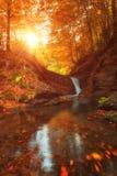 Goldene Herbstlandschaft, Gebirgsbach mit kleinem Wasserfall im Wald Stockfoto