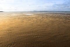 Goldene Kräuselungen des Sandes Stockfoto