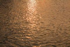 Goldene Kräuselungen im Wasser Stockfoto