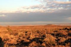 Goldene Leuchte des Sonnenaufgangs lizenzfreie stockfotos