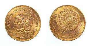 Goldene mexikanische Münze Lizenzfreie Stockfotos