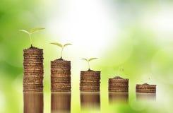 Goldene Münzen im Boden mit den Jungpflanzen, die zur Finanzinvestitionskrise darstellen Stockbilder