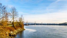 Goldene Ohr-Brücke über Fraser River angesehen von der Spur Transportes Kanada nahe der Bonson-Gemeinschaft in Pitt Meadows Lizenzfreie Stockfotografie