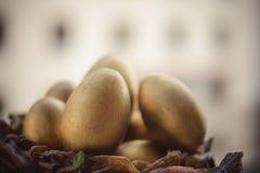 Goldene Ostereier Lizenzfreies Stockfoto
