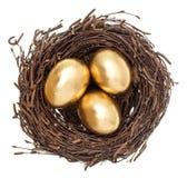 Goldene Ostereier im Nest lokalisiert auf Weiß Lizenzfreie Stockfotos