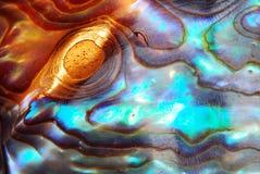 Goldene Perle Stockfotos
