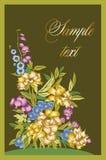 Goldene Pfingstrose andere Blumen Stockfotos