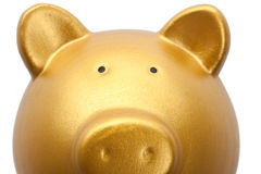 Goldene Piggy Querneigung Stockfoto