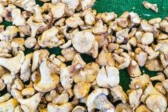 Goldene Pilze in einem Markt, Paris Frankreich lizenzfreies stockbild