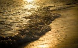 Goldene Reflexion des Sonnenuntergangs auf dem Strand stockbilder