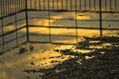 Goldene Reflexion eines Sonnenuntergangs auf Seeoberfläche, Ada See, Belgrad Lizenzfreie Stockfotografie