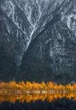 Goldene Reflexion von Autumn Beerch Trees In Blue-Wasser bei Sonnenuntergang Landschaft mit Autumn Trees And Snow-Covered Rocky-B Stockfotos