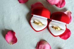 Goldene Ringe für neue Paare des Feierns ihrer Verpflichtung Lizenzfreie Stockfotos