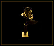 Goldene Rose stockfotos