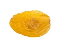 Goldene Rosine stockbild