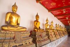 Goldene sitzende Buddha-Statuen Stockfotos