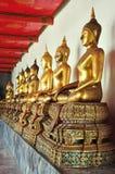 Goldene sitzende Buddha-Statuen in Wat Pho Stockbild