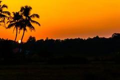 Goldene Sonnenuntergänge Stockbilder