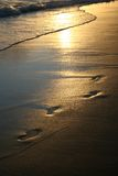 Goldene Sonnenuntergangfußdrucke auf Strand Lizenzfreies Stockfoto