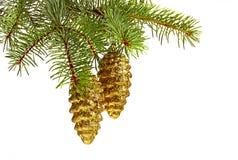 Goldene Spielzeugtannenkegel und Weihnachtsbaum Lizenzfreie Stockfotografie