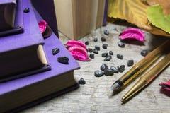Goldene Stifte und alte Bücher Stockbilder