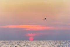 Goldene Stunde in dem Meer Lizenzfreie Stockfotos