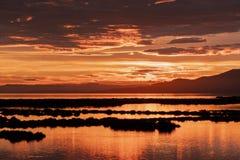 Goldene Stunde des Sonnenuntergangs in der Delta del Ebro-Naturpark, Tarragona, Catalunya, Spanien lizenzfreie stockfotografie