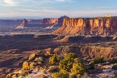 Goldene Stunde von großartigem Standpunkt Canyonlands stockfotos