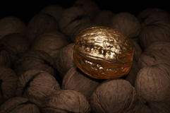 Goldene Walnuss Lizenzfreie Stockbilder