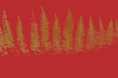 Goldene Weihnachtsbäume Stockfotos