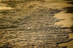 Goldene Welle stockbilder