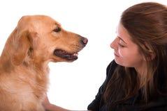Goldener Apportierhund mit ihrem Inhaber. Stockfoto