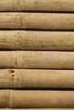 Goldener Bambus in Thailand Lizenzfreies Stockbild