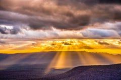 Goldener Bruch durch Stockfotografie