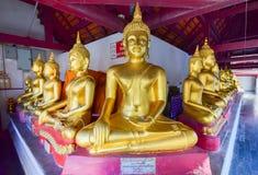 Goldener Buddha in Meditationspoliersitz an Praphuttachinnarat-Tempel in Thailand Stockbild