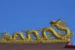 Goldener Drache lizenzfreies stockfoto